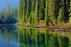 Yohoo National Park, Western Canada Yohoo-I by sedats