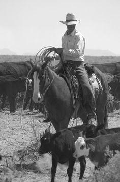 Cowboy and horse working together roping calves at Zapata Ranch. #ZapataRanch