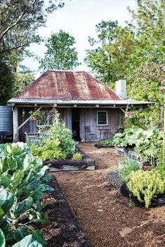 Rustic gardens, outdoor gardens, dream garden, home and garden, summer Old Cottage, Garden Cottage, Home And Garden, Meadow Garden, Rustic Gardens, Outdoor Gardens, Roof Gardens, Creole Cottage, American Farmhouse