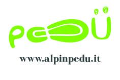 #pedü #alpinpedü #Lanzada #Valmalenco #Valtellina #calzature #scarpe #stoffa #velluto #www.alpinpedu.it #pfpvaltellina #presentazione #progetto #maestridarte