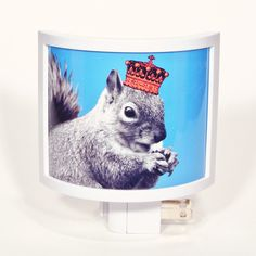 YOU KNOW squirrel night light. $16