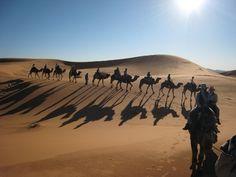 Our tourist convoy