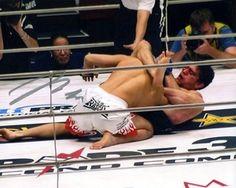 Nick Diaz Signed Photo $69.99   #MMA #UFC #PRIDEFC