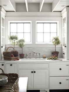 White on white kitchen; just add a cooktop and you're done