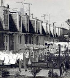 Pieterseliewaltje zuidzijde. 1960-1970