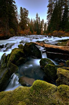 Deschutes River Chute