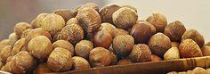 hybrid hazelnuts- national arbor day foundation members get three trial bushes