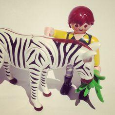 Feeding time! 2:6 #zoo #zookeeper #animal #animals #toy #toys #toycrewbuddies #toyphotography #toypicoftheday #toyphotooftheday #playmo #playtime #playmobil #playmosg #zebra #nature #wildlife