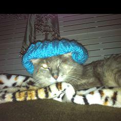 He doesn't like wearing my hat.