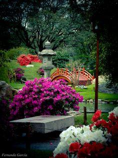 Se trata de los jardines japoneses Buenos Aires . La gente viene aquí para ver la vista y ver la hermosa naturaleza.
