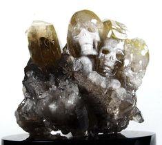 Loving Harmony - Rutilated Quartz Druse Carved Crystal Skulls Sculpture with Black Obsidian Stand Black Quartz, Treble Clef, Crystal Skull, Rutilated Quartz, Single Piece, Quartz Crystal, Skulls, Lion Sculpture, Carving