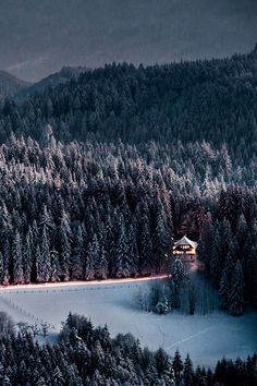 SEASONAL – Snowy Night, The Black Forest, Germany photo via lovealways
