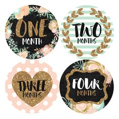 Monthly Baby Milestone Stickers Baby Girl by ShopVivaLaGlitter