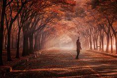 Woman enjoying autumn (인대) by c1113 - Photo 185021937 / 500px