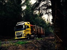 Volvo FH16-750 6x4 forestry truck. Operator is Henry Evans of Llanidloes, Wales.