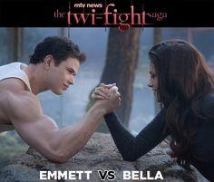 Twilight fight :)