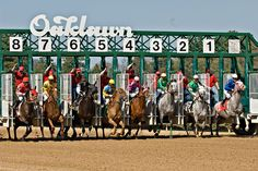 And They're Off!  Oaklawn, Hot Springs, Arkansas