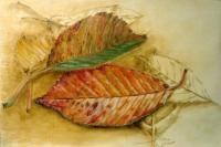 cherry leaves