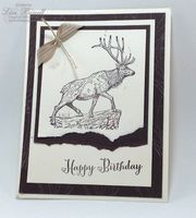 Make this quick guy card using the Wilderness Awaits stamp set. For a list of all supplies visit lisastamps.com Lisa Bowell Stampin Up Demonstrator