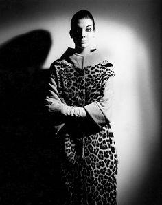 Henry Talbot Fashion Photography Archive © Lynette Anne Talbot