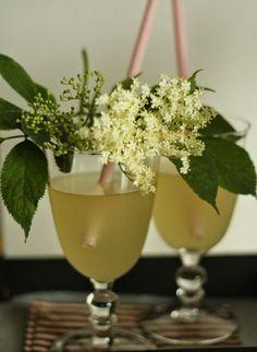 Must-Try Czech Summer Beverages Home Canning, Elderflower, Summer Drinks, Hurricane Glass, Food Hacks, Food Tips, Food To Make, Planter Pots, Food And Drink