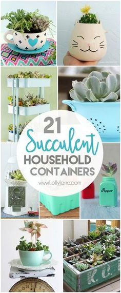 21 household succulent containers Check out these awesome everyday household items you can transform into pretty succulents My favorite is the salt and pepper succulents. Succulents In Containers, Cacti And Succulents, Planting Succulents, Container Flowers, Container Plants, Growing Succulents, Propagating Succulents, Cute Home Decor, Easy Home Decor