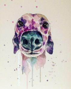 A Watercolour Print of the greyhound snoot. An amazing multipurpose tool that deserves to be celebrated in its own right!  The watercolour print measures A4 (21x30cm) on 300 GSM (high grade) art paper.  Prints are posted flat in a sturdy package. Items are not posted with a tracking facility so please request it if you prefer. Thank you for browsing my store.