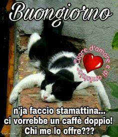 Bacio e buongiorno baci ciao sorrisi tvb felicit for Buongiorno divertente sms