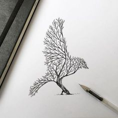 Les-dessins-de-nature-melee-de-Alfred-Basha-6