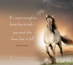 """""""It's never enough to know how to ride - you must also know how to fall."""" -- Mexican Proverb"""