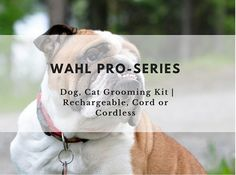 This is a review of the Wahl Pro-Series Dog, Cat Grooming Kit, Rechargeable, Cord or Cordless. The review covers everything from the features of this grooming kit, its advantages and disadvantages