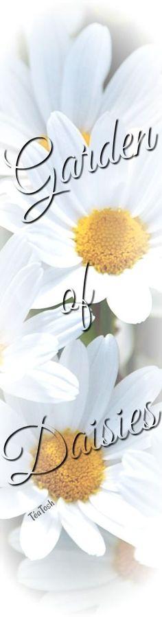 Téa Tosh Garden of Daisies Simple Flowers, Wild Flowers, Daisy Love, Daisy Daisy, Place Card Holders, Seasons, Tea, Spring, Pretty