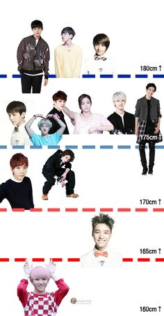 A Nice Chart Showing Which Category the Seventeen Boys Fit In... Woozi I love you, don't kill me.