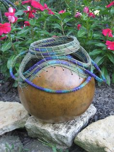 Coiled Gourd by StaghornBasketry on Etsy, $65.00