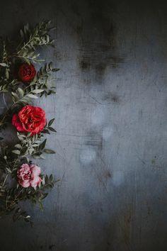 Floral wallpaper photo by Annie Spratt ( on Unsplash Free Background Images, Flower Background Wallpaper, Flower Phone Wallpaper, Rose Wallpaper, Cellphone Wallpaper, Flower Backgrounds, Colorful Wallpaper, Screen Wallpaper, Nature Wallpaper