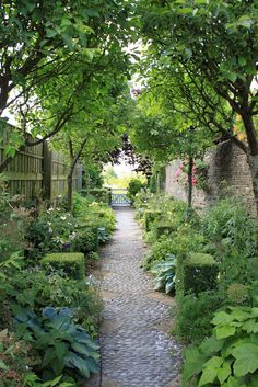 Garden. Even a very narrow space can be attractive when one uses the right plants.