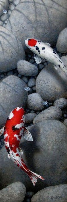 Terry Gilecki is a highly aclaimed painter of the beautiful Koi fish and the surreal world they live in. Koi Fish Pond, Fish Ponds, Koi Art, Fish Art, Betta, Koy Fish, Koi Painting, Koi Fish Tattoo, Carpe