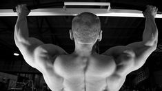 Primer 4: Big, Bad, Basic Workouts, by Paul Carter #workout #fitness #powerlifting