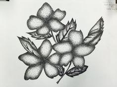 Flowers  - Pen Rendering / Stippling technique