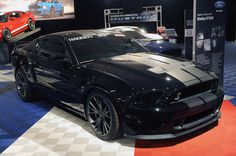 2013 Shelby GT500 Maybe I shoulda been a guy....love muscle cars & motorcycles!! Nahhhh, I'll just be the girl who loves cars & motorcycles!!!