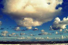 lillemo Himmel Wolken Sky Clouds Bird Vogel