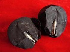 An uncommon stone imbedded with screw-threaded metal bar from a collector in Lanzhou Mr. Zhilin Wang. He found this stone on a field research trip to the Mazong Mountain area located on the border of Gansu and Xijiang provinces. The pear-shaped stone is extremely hard and has a mysterious black color. It is about 8 x 7 cm and weighs 466 grams. The most surprising part of the stone is the imbedded 6 cm cone-shaped metal bar which bears clear screw threads.