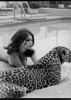 Natalie Wood's younger sister LANA with a leopard for a 1969 issue of Italian magazine ''Playmen'' Veronica Lake, New Yorker Stil, Black White Photos, Black And White, Shirley Jones, Natalie Wood, Chica Anime Manga, White Photography, Beauty And The Beast