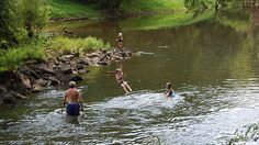 Test a Swimming Hole's Water Quality by Sight by Looking for Insects