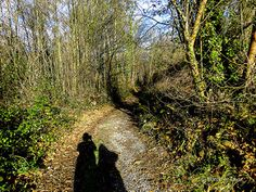 Camino Primitivo 2 Grado - Salas