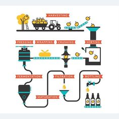Cute little cider making graphic we did for longways cider! Cider Making, Harvest, Infographic, Wraps, How To Make, Image, Illustration, Infographics, Illustrations