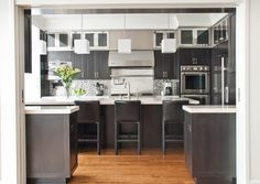 Contemporary Kitchen Remodel Chicago | Chicago Home Remodeling