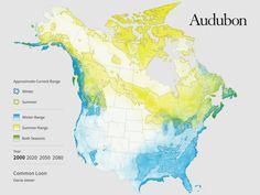 The Audubon Report at a Glance