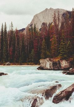 0rient-express:  quick waters. | byNatalie| on Tumblr.