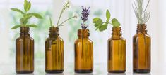 Essential oil benefits - Dr. Axe